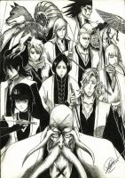 Bleach with Gotei 13 Captains by XAllenX