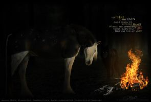 I set Fire to the Rain... by ZOMBABE-designs