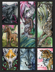 ATC.:.Spring.X.Emotion by WhiteSpiritWolf