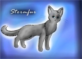 Stormfur by leftysmudgez