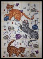 Cat Sampler by KezzaLN