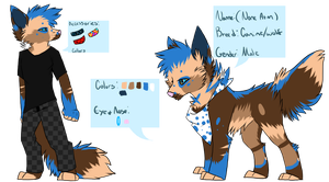 Blue Wolf Reference: Commission by Woods-Of-Lynn