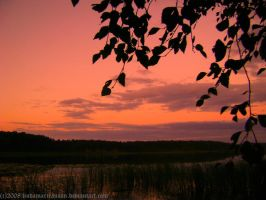 evening over the lake2 by LindaMarieAnson