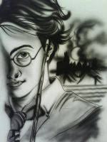 Harry of the Potters by ButterflyStomper