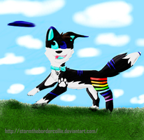 Storm by StormTheBorderCollie