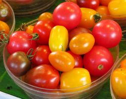 Mixed Cherry Tomatoes by Kitteh-Pawz