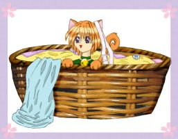 Laundry Basket by polkadotbeetle