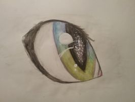 Eye by TheEpicWingedWolf
