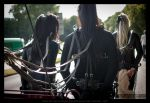 A closer look on horse tack by AbrX