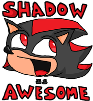 Shadow is Awesome by Poti05