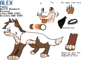 oh look a new ref by Driifting-Dream