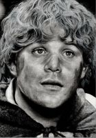Sean ASTIN by Sadness40