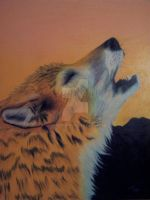Foxfur Realism Prismacolor Drawing by FoxfurNeo