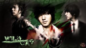 Wild Cat Yesung Wallpaper by Cristal1994