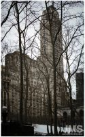 500 Fifth Avenue Building and Bryant Park by steeber