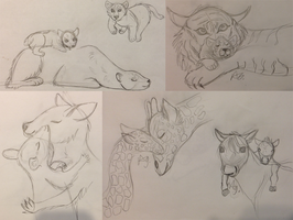 mothers day sketches by coat