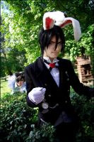 Ciel in Wonderland: Follow the White Rabbit by general-kuroru