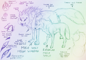 Male Wolf Moon Warrior-Ref by Fly-Sky-High
