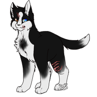 Personal| Ryi by DevilsRealm