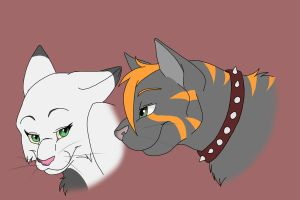 Request for shadowfolgers3000 by VampireSelene13