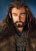 Thorin Oakenshield by EmeraldLin8891