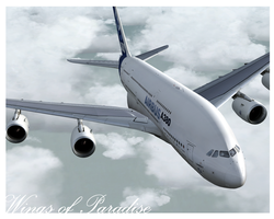 Airbus: Wings of Paradise by angelswake-tf
