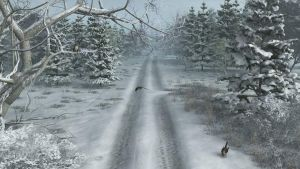 Another Road In Winter by anne1956