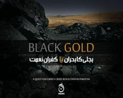 Black Gold by aash