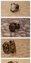 Steampunk Rings : 01 by taeliac