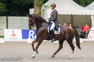 Dressage - IV by Summerly