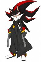 shadow the hedgehog +TLR+ by nancher