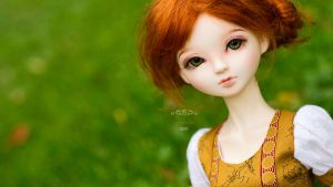 Lily 06 by Meikemuis
