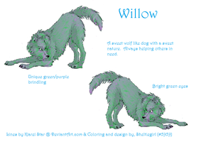 Willow Character DD by HiddenParadise1