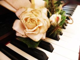 the Piano and the Rose by DocsCompanion