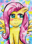 Fluttershy by FaithWalkers