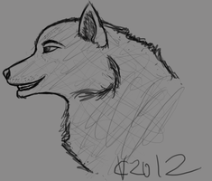 Wolf Head Sketch by PonyRave