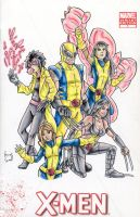 Wolvie and the Girls by ibroussardart