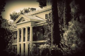The Mansion by atomicranchgal