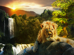 King of the jungle by Mathiasart4