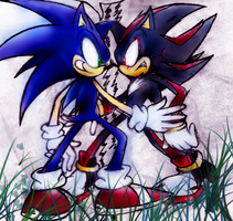 Sonic VS Shadow COLOURED by Mardic