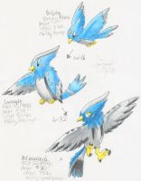 Fake Pokemon: bird evo line by PachirisuLuva