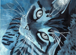 Monochromatic Blue Kitty by Ash-335
