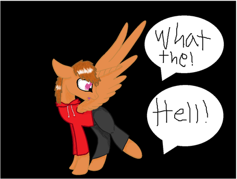 WHAT THE HELL!? by dandanfuntime12