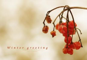 Greeting by dexter13-sk