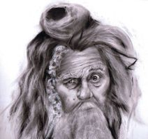 The Hobbit - Radagast the brown by Cocolie