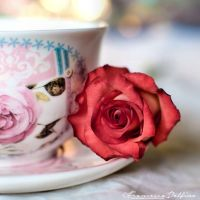 Rose tea by FrancescaDelfino