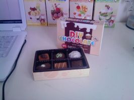 Chocolate Pieces Open Box by carmietee