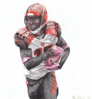 Chris Henry, Scanned.1.22.10 by Kalmek182