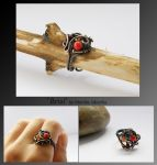 Arial- wire wrapped ring by mea00