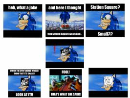 Joke's on you this time, Sonic... by totoro10